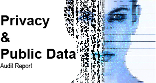 Privacy and Public Data Audit Report