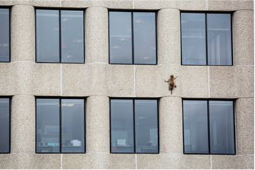 Source: http://time.com/5310704/raccoon-climbs-minnesota-ubs-skyscraper/